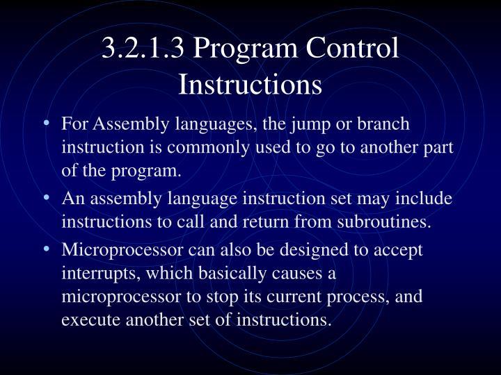 3.2.1.3 Program Control Instructions