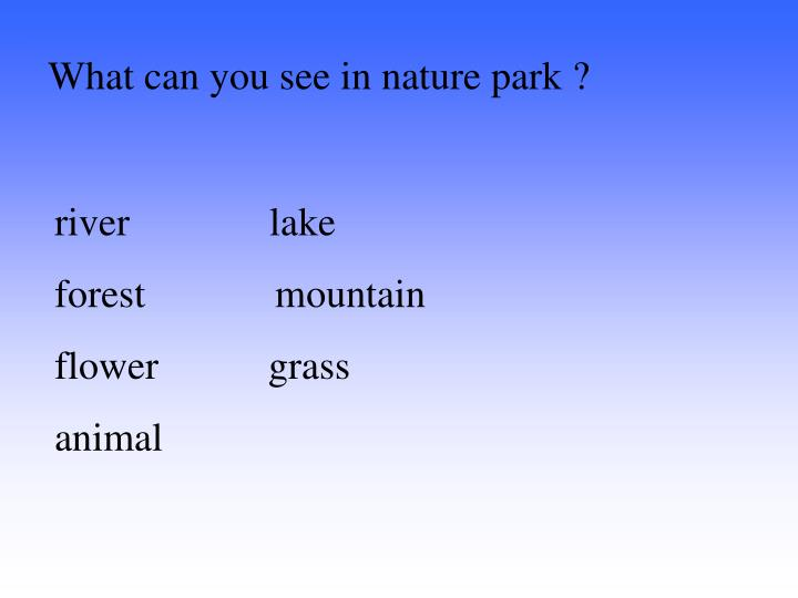 What can you see in nature park ?