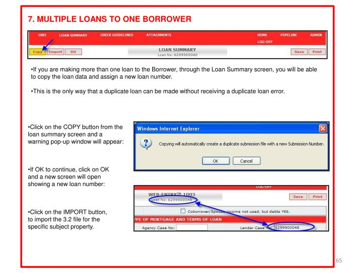7. MULTIPLE LOANS TO ONE BORROWER
