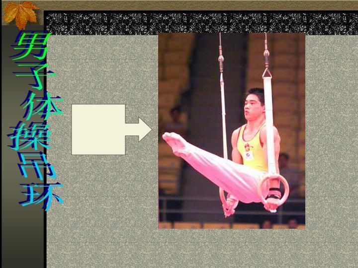 男子体操吊环