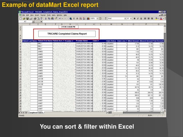 Example of dataMart Excel report