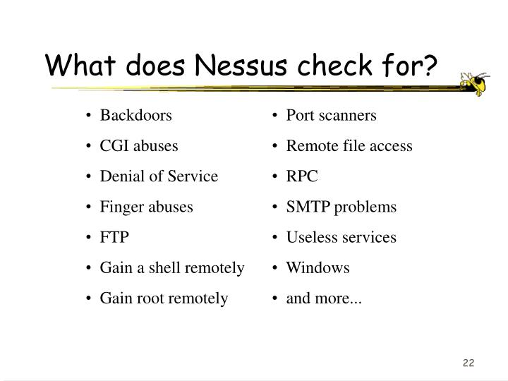 What does Nessus check for?