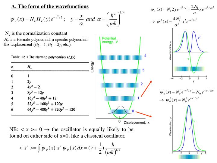 A. The form of the wavefunctions