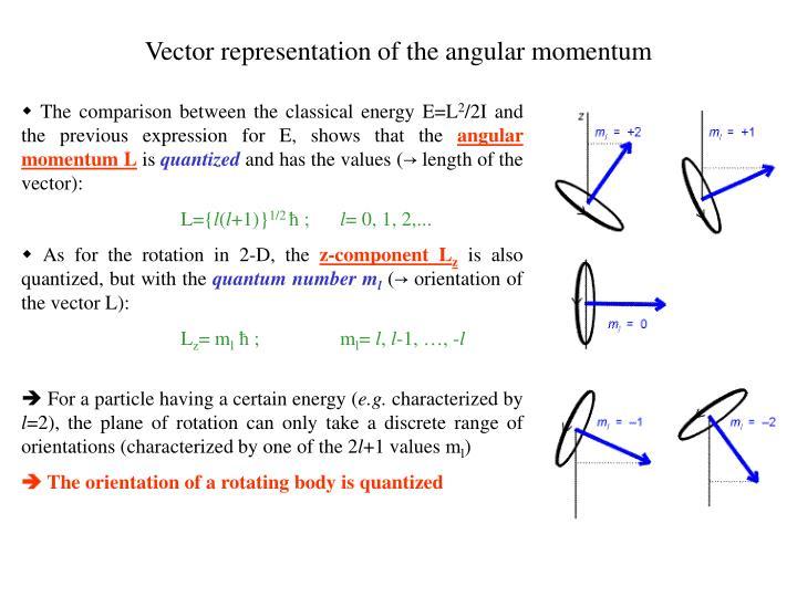 Vector representation of the angular momentum