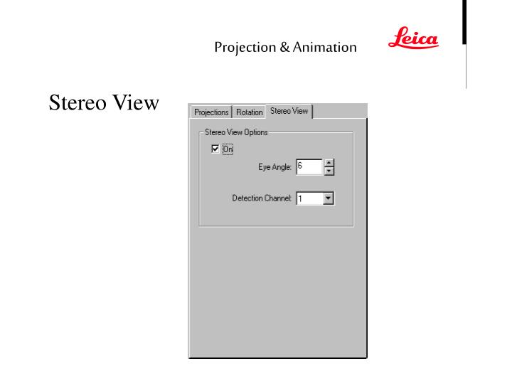 Projection & Animation