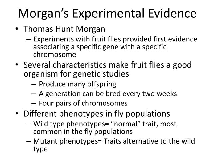 Morgan's Experimental