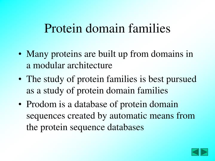 Protein domain families