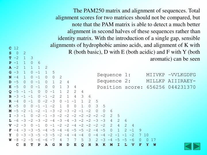 The PAM250 matrix and alignment of sequences. Total alignment scores for two matrices should not be compared, but note that the PAM matrix is able to detect a much better alignment in second halves of these sequences rather than identity matrix. With the introduction of a single gap, sensible alignments of hydrophobic amino acids, and alignment of K with R (both basic), D with E (both acidic) and F with Y (both aromatic) can be seen