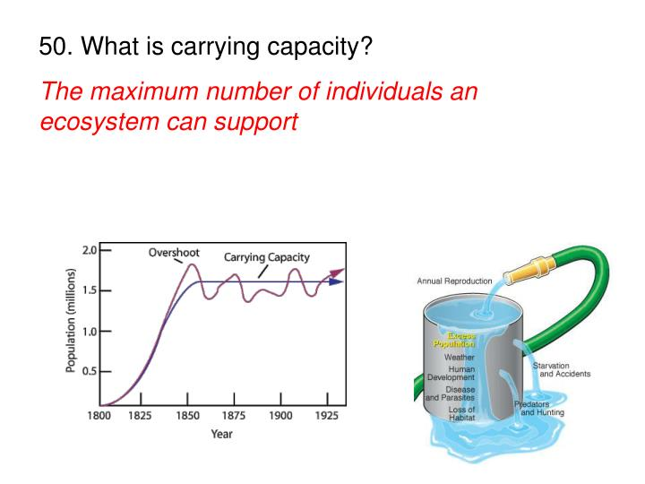50. What is carrying capacity?