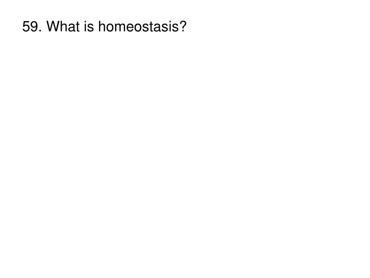 59. What is homeostasis?