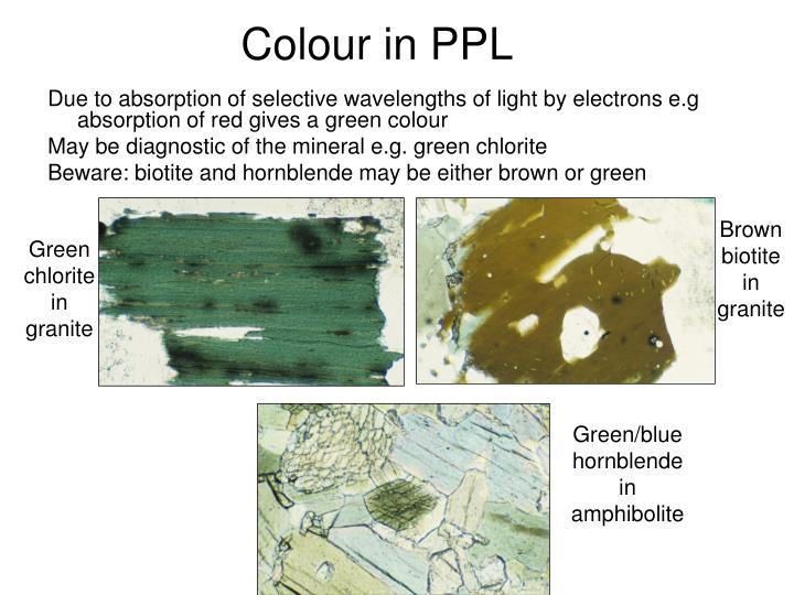 Colour in PPL
