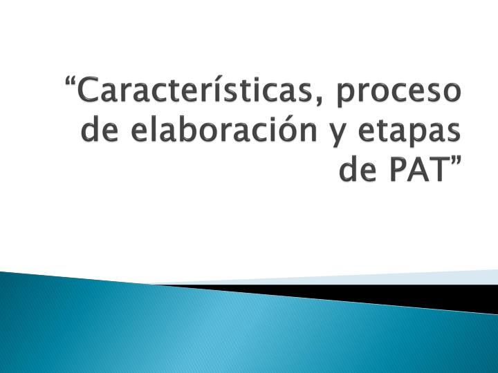 """""""Características, proceso de elaboración y etapas de PAT"""""""