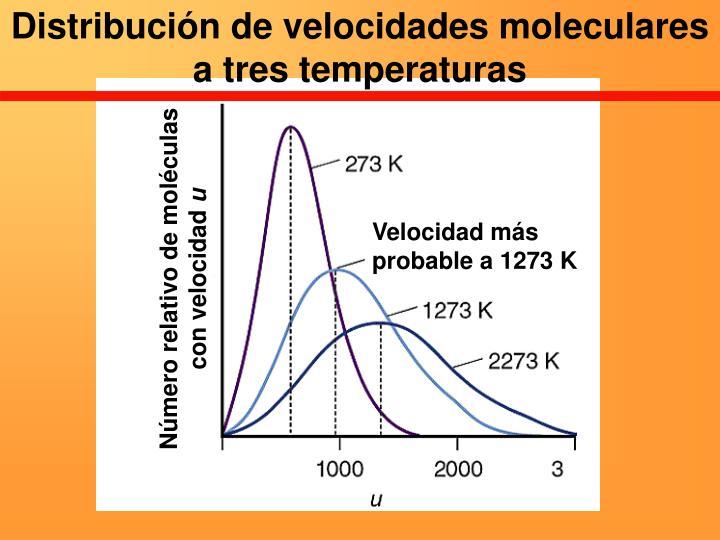Distribución de velocidades moleculares a tres temperaturas