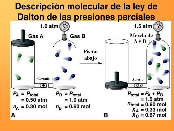 Descripción molecular de la ley de Dalton de las presiones parciales