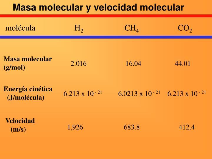 Masa molecular y velocidad molecular