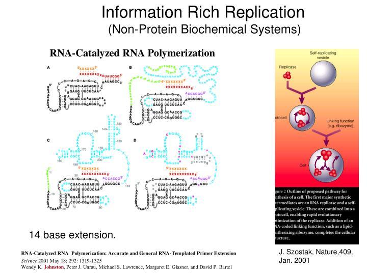 Information Rich Replication
