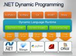 net dynamic programming1