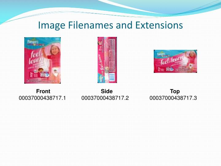 Image Filenames and Extensions