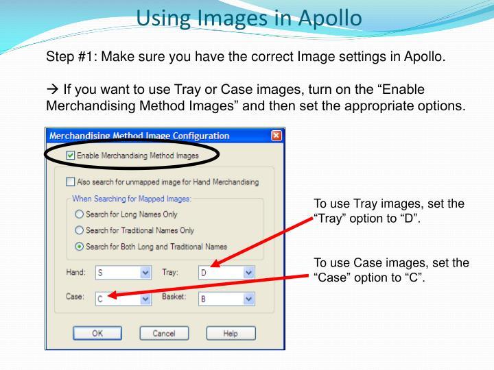 Using Images in Apollo