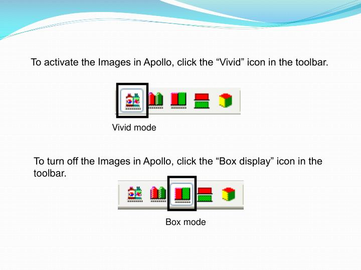 """To activate the Images in Apollo, click the """"Vivid"""" icon in the toolbar."""