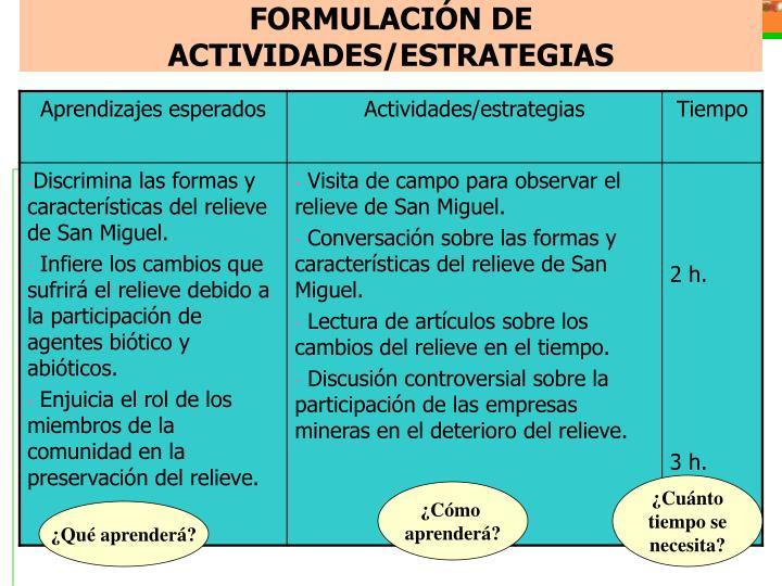 FORMULACIÓN DE ACTIVIDADES/ESTRATEGIAS