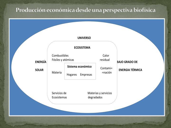 Producción económica desde una perspectiva biofísica