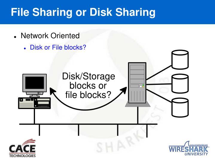 File Sharing or Disk Sharing