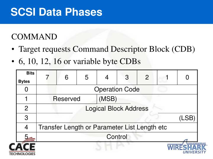 SCSI Data Phases