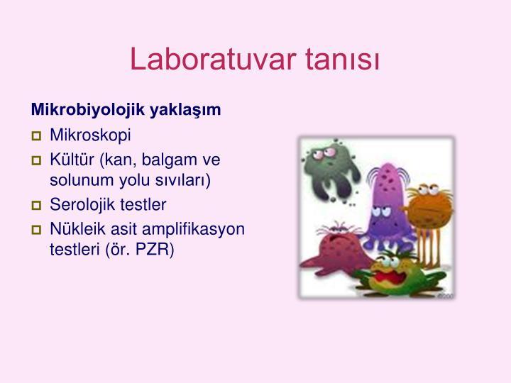 Laboratuvar tanısı