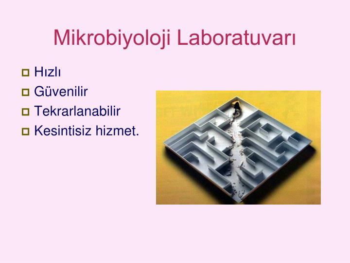 Mikrobiyoloji Laboratuvarı