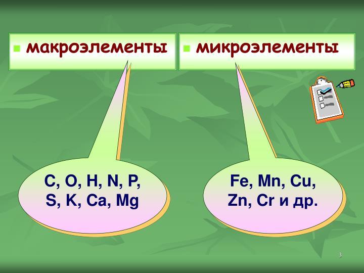 макроэлементы