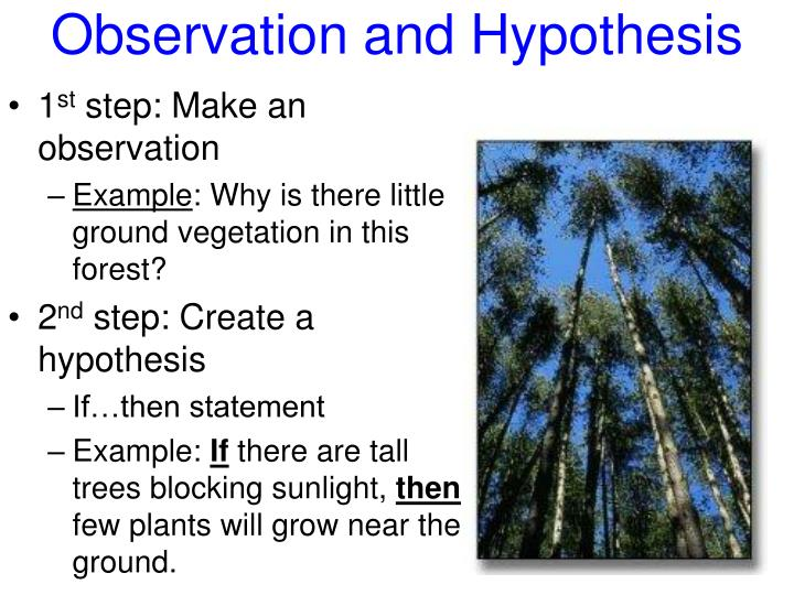 Observation and Hypothesis
