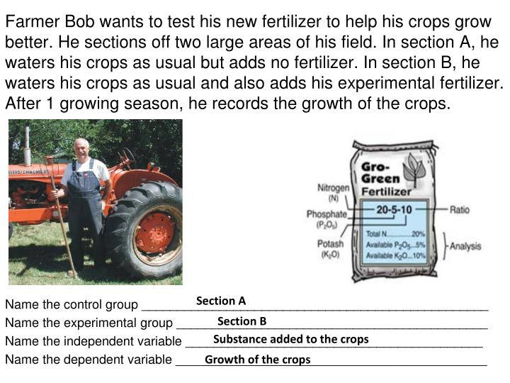 Farmer Bob wants to test his new fertilizer to help his crops grow better. He sections off two large areas of his field. In section A, he waters his crops as usual but adds no fertilizer. In section B, he waters his crops as usual and also adds his experimental fertilizer. After 1 growing season, he records the growth of the crops.