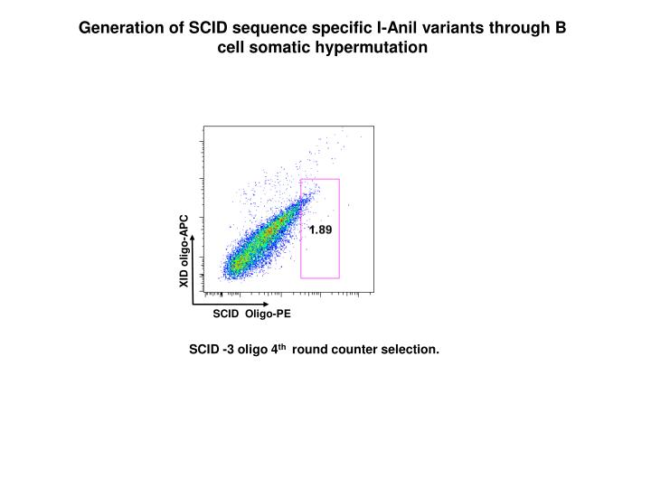 Generation of SCID sequence specific I-Anil variants through B cell somatic hypermutation