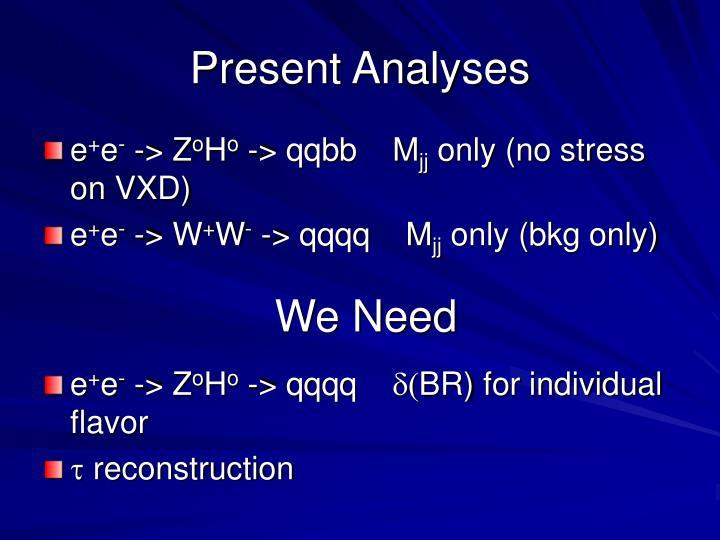 Present Analyses