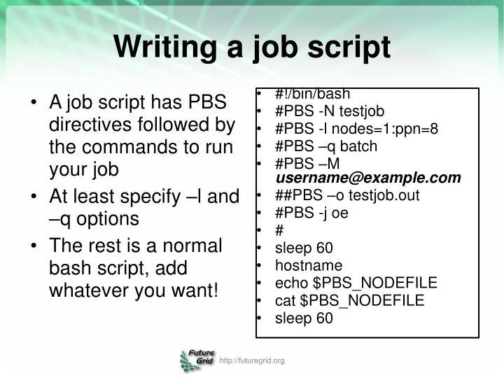 Writing a job script