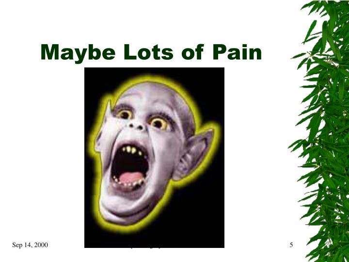 Maybe Lots of Pain