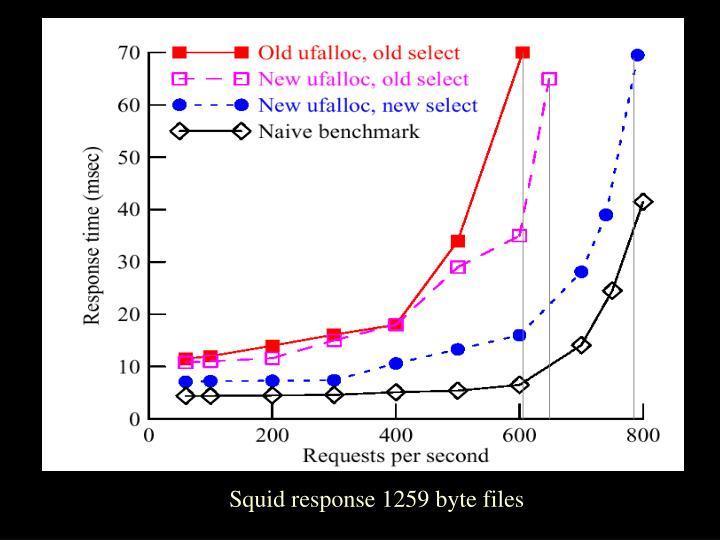 Squid response 1259 byte files