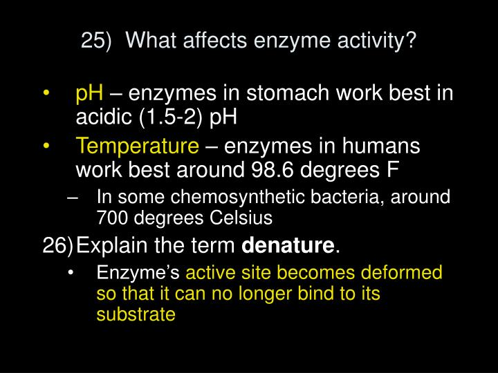 25)  What affects enzyme activity?