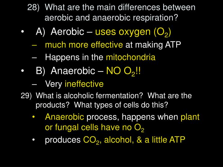 28)  What are the main differences between aerobic and anaerobic respiration?