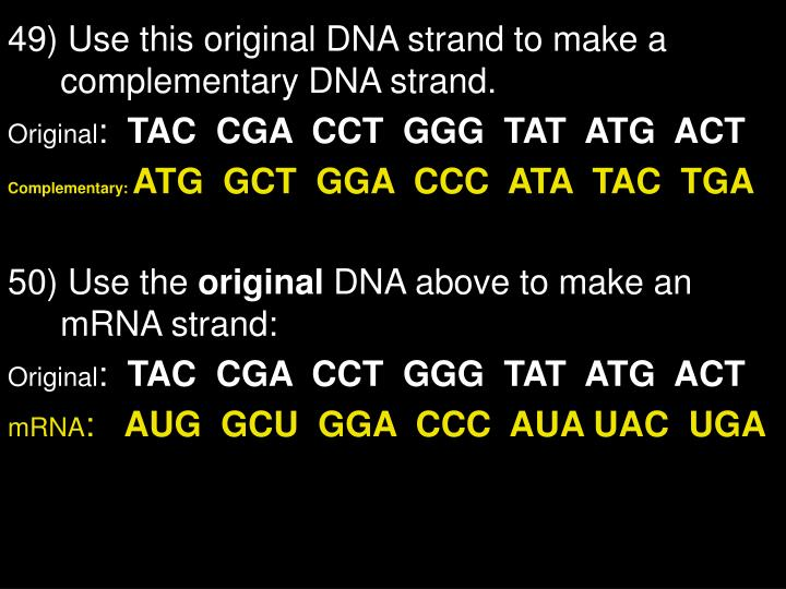 49) Use this original DNA strand to make a complementary DNA strand.
