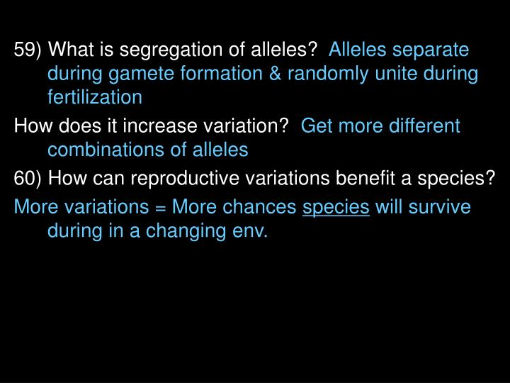 59) What is segregation of alleles?