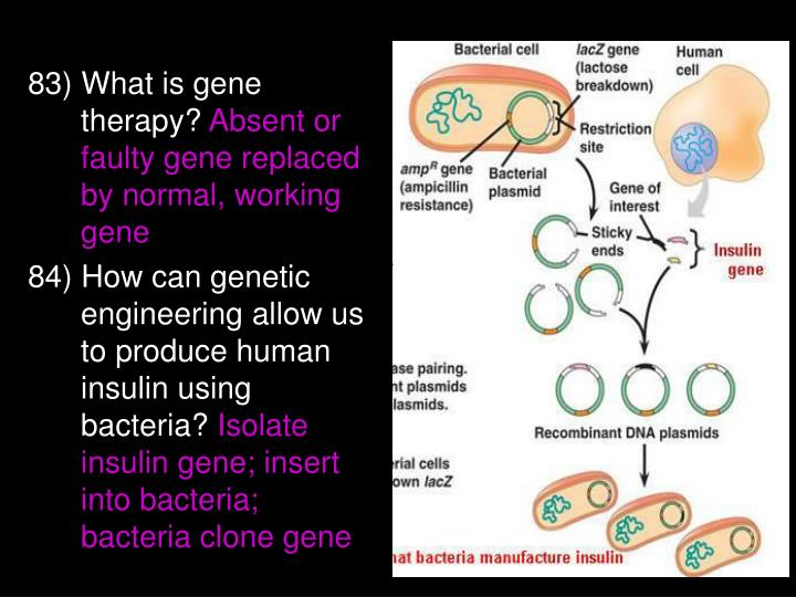 83) What is gene therapy?