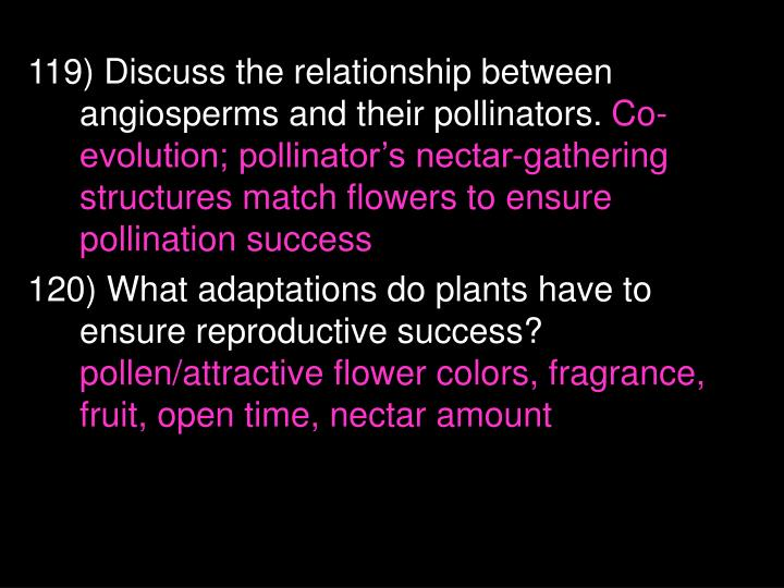 119) Discuss the relationship between angiosperms and their pollinators.