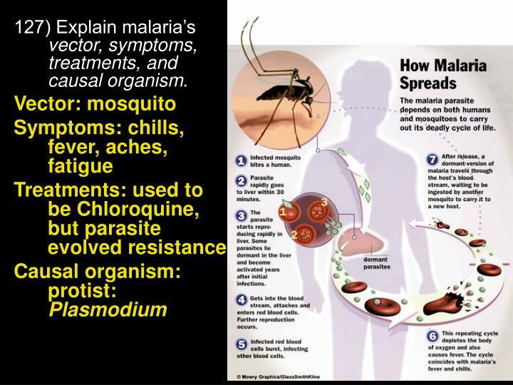127) Explain malaria's
