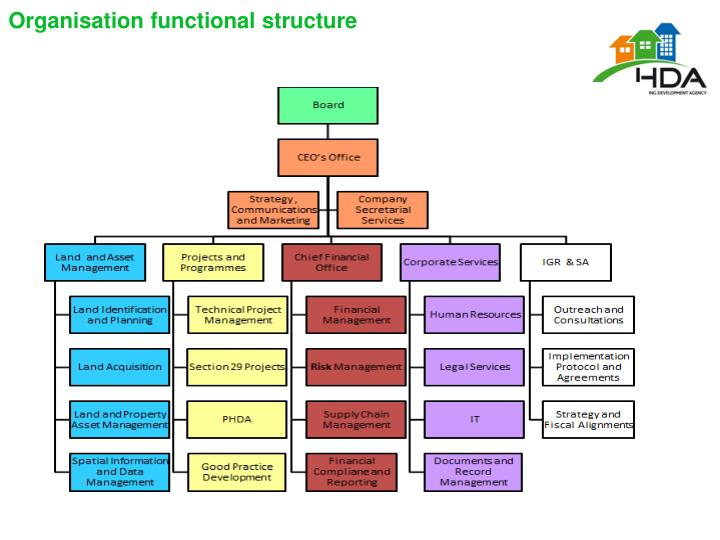 Organisation functional structure