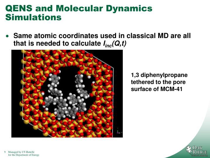 QENS and Molecular Dynamics Simulations