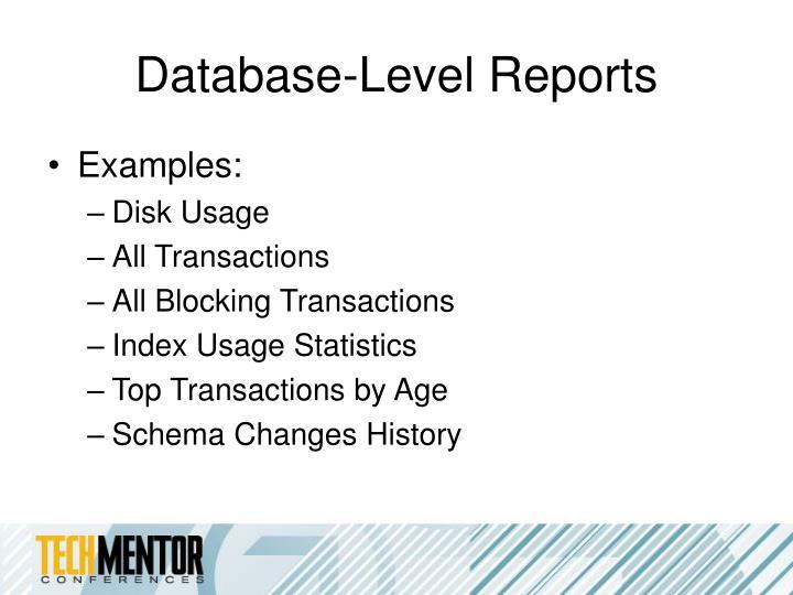 Database-Level Reports