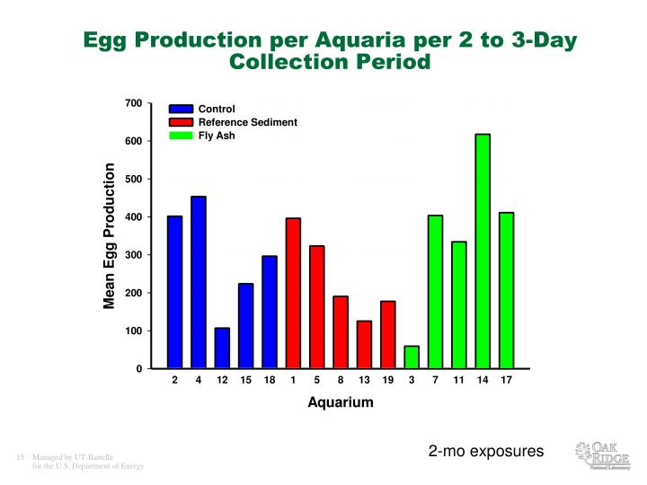 Egg Production per Aquaria per 2 to 3-Day Collection Period