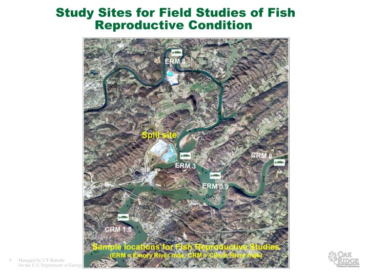 Study Sites for Field Studies of Fish Reproductive Condition